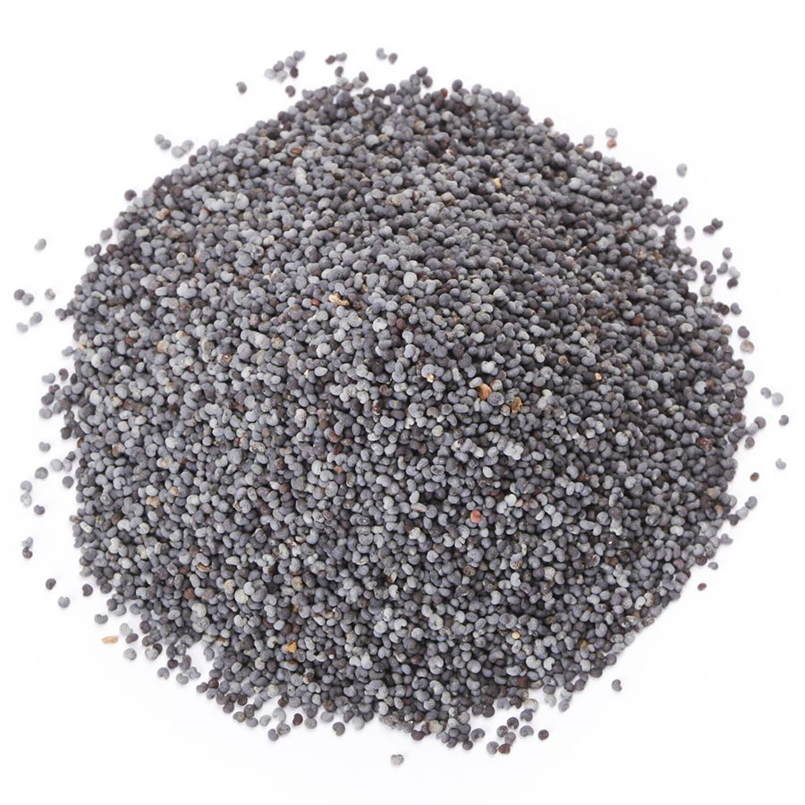 Graines de pavot - Poppy seeds
