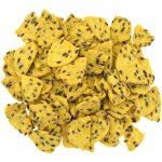 Croustille de maïs avec lin - Corn chips with flax
