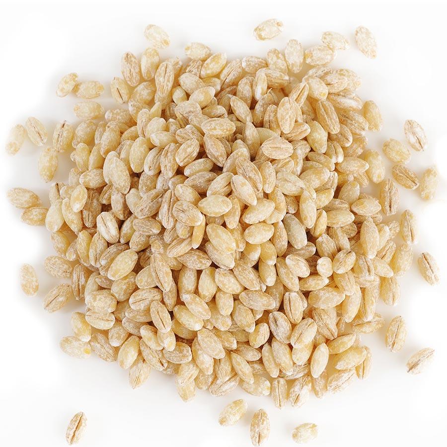 Orge - Barley